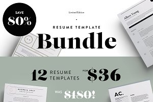 Major Resume Bundle | 80% off!