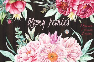 Bloomy Peonies Watercolor Clipart