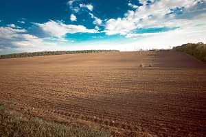 Field plowed
