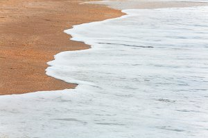 Sandy - cockleshell background
