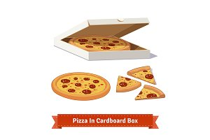 Pizza in the opened cardboard box.