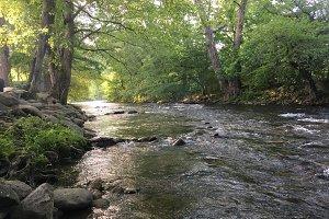 Mountain Creek in the Morning