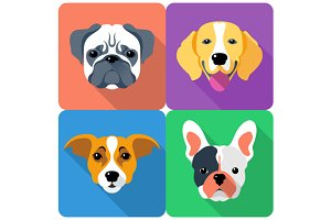 Set dog icon flat design 2