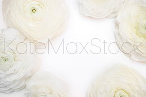 KATEMAXSTOCK Styled Stock Photo #800