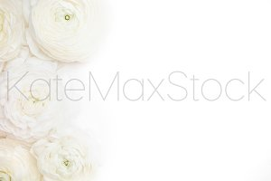 KATEMAXSTOCK Styled Stock Photo #803