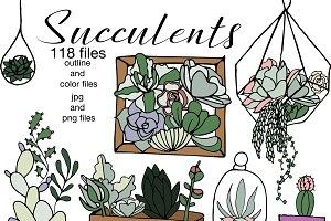 Succulents- outline & color