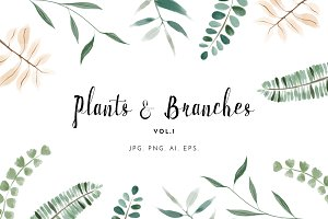 Watercolour Plants & Branches