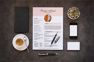 Professional Resume Template-V022