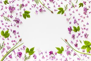 Frame of fresh lilac flowers