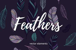 Vector Feathers Set
