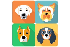 Set icon flat design dogs 3