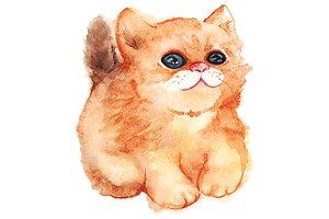 Watercolor ginger cat vector