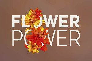 Flower Power - Photos & Graphics