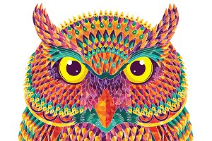 Hand-drawn colorful owl.