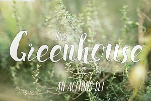 "PHOTOSHOP actions set ""Greenhouse"""