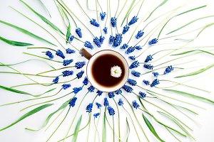 Muscari flower and tea mug