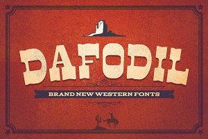 Dafodil & Extra