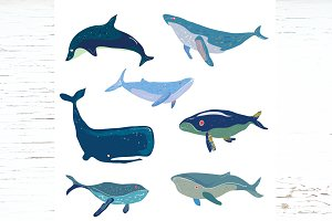 Whales icons and seamless - vectors