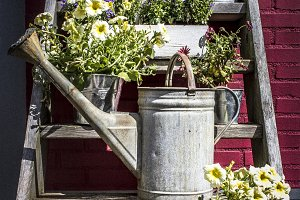 Watering Cans and flower stairs