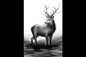 Monochrome winter deer with horns