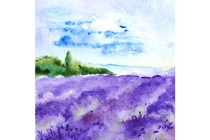 Watercolor lavender fields landscape