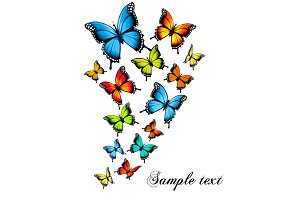 Beauty Butterfly Background