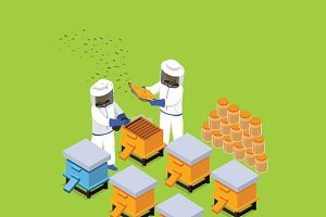 Isometric Honey Bee Apiary Beekeeper