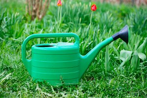 watering can standing on grass