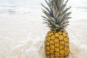 Pineapple at Beach in Mexico 6