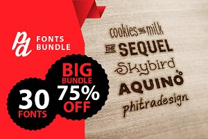 PD Fonts Bundle (-75% OFF LIMITITED)