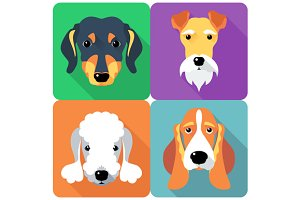 Set dogs  icon flat design 5