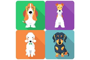 Set dogs sitting icon flat design 6