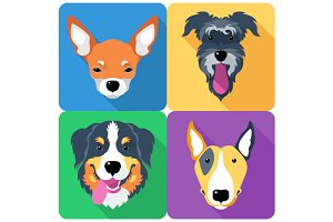 SET dog icon flat design face 7