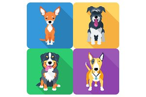 SET dog icon flat design 8