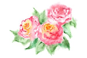 Watercolor pink rose composition