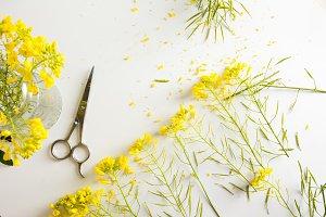 Florist worktable, yellow flowers