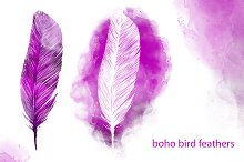 set boho bird feather