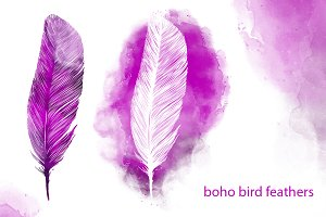 set boho bird feather