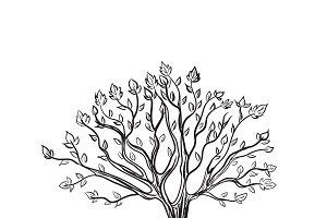 tree, sketch style, vector