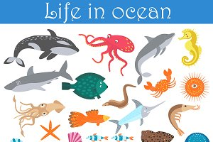Cartoon sea animals fish collection.