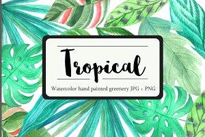 Tropical Watercolor Greenery Set
