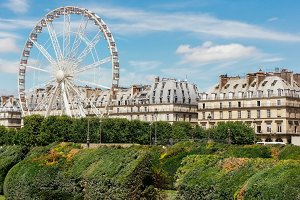 Ferris wheel (Roue de Paris) on the Place de la Concorde from Tuileries Garden in Paris, France.