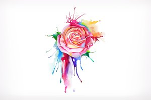Watercolor painting, rose flower