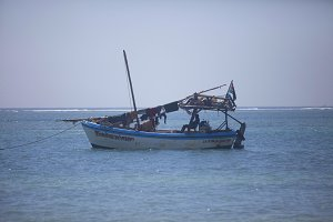 Traditional Arabic Dhow Indian Ocean