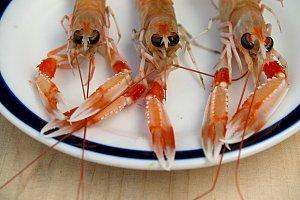 three crawfish on a plate