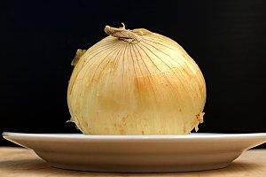 onion on a plate