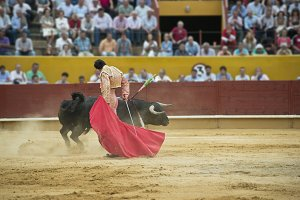 Bullfighting.