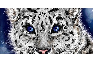 Little sketched snow leopard vector