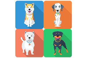 SET dog icon flat design 10