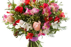 Freesia flowers bouquet isolated